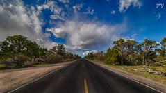 असाच एक एकटा रस्ता (Yogendra174) Tags: 7dm2 arizona grandcanyon usa yavapaipoint landscape road roadmap clouds sky bluesky trees lonely
