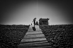 Rocky Road (Livesurfcams) Tags: surfer girl devon ricohgr slipway path steps ricoh
