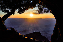 Sunset at Grand Canyon (W_von_S) Tags: grandcanyon sunset sonnenuntergang landschaft landscape panorama paysage paesaggio sun usa us america amerika vereinigtestaaten hopipoint wvons werner june juni 2017 outdoor southwest coloradoriver arizona natur nature unitedstates framing rahmen