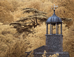 The bell tower, West Dean House. (Brian Southward) Tags: infrared infraready minoltamd architecture trees