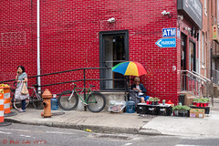 Selling Plants (ViewFromTheStreet) Tags: atm allrightsreserved blick blickcalle blickcallevfts calle cherrystreet chinatown copyright2017 pennsylvania philadelphia photography sellingplants stphotographia streetphotography viewfromthestreet amazing bicycle bike camera candid classic crates fineasiancuisine firehydrant guy hair handdrawnnoodles male man noodles parking plants rainbowumbrella redbrick redbrickbuilding securitycamera street streetcorner vftsviewfromthestreet ©blickcallevfts ©copyright2017blickcalle