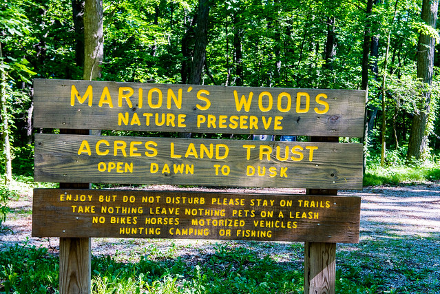 Marion's Woods Nature Preserve - June 21, 2017