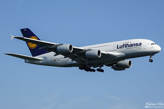 Lufthansa --- Airbus A380 --- D-AIMF (Drinu C) Tags: adrianciliaphotography sony dsc rx10iii rx10 mk3 fra eddf plane aircraft aviation lufthansa airbus a380 daimf