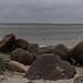 Kitesurfer in Laboe (michael_hamburg69) Tags: schleswigholstein germany deutschland ostsee balticsea beach strand laboe diesonnenseitederkielerförde