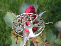 #htt (Mr. Happy Face - Peace :)) Tags: macro htt rose red silver tree ring hmm wtbw life jewel floral love faith flickrfriends hope metallic