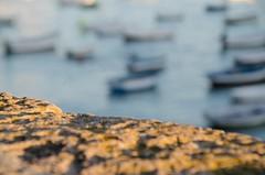 Julio. Close up (inma F) Tags: cadiz paisaje verano playa beach boats sea mar caleta closeup desenfoque