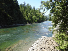 snoqualmie river (MissLydia) Tags: summer snoqualmiefalls wastate twinpeaks snoqualmie july nature 2017 theowlsarenotwhattheyseem staycation waterfall