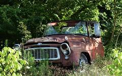 International (robgividenonyx) Tags: abandoned kentucky owencounty internationalharvester rusted rural ruraldecay