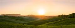 DSC_0676-Pano-Edit.jpg (saladino85) Tags: tuscana tuscany scenery sunset trees italy green hills typical holiday landscape