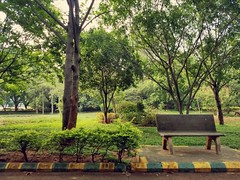 Small relaxation walk after a long gap that was a plesent walk around 2 and half hour burning some calories feeling happy . .. #bengaluru #sobangalore #igersbangalore #namabengaluru #karnataka #karnatakastreets #kormangla #earlymornings #mornings #morning (ps_avinash) Tags: bench namabengaluru karnatakastreets sobangalore coffee workouts newday earlymornings minimalism casualclick igersbangalore positivevibes clicks newthoughts bengalurunodi photography gap bengaluru gardencity weekendvibes kormangla park tree photoart morningclicks india mornings karnataka weekend