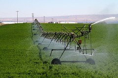 Tri-Cities Ag (KevinCole509) Tags: tricities kevincole509 irrigation water farming ag agriculture sprinkler