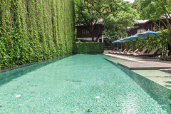 Travel: 137 Pillars House, Chiang Mai, Thailand (jennchanphotography) Tags: 137pillars chiangmai thailand hotel luxury partner vacation travel tourism southeast asia seasia