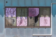 Cracked window (Yuta Ohashi LTX) Tags: broken crack window glass abstract accidental pink purple city snap cityscape street pattern d750 nikon ニコン 窓 ガラス ひび割れ ピンク パープル 街 大洗 茨城 日本 スナップ 路上 japan ibaraki ooarai