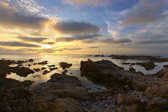 Point Pinos Sunset (Forget Me Knott Photography) Tags: pinospoint monterey montereybay california pacific ocean sea coast shore shoreline coastline beach rocks surf clouds cloudy sunset sunrise reflection 17miledrive pacificgrove