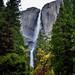 Majestic Yosemite Falls (Yosemite National Park)