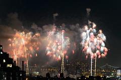 4th of July 2017 Macy's Fireworks-78 (Diacritical) Tags: brooklyn nycmacys nikond4 pattern 70200mmf28 30secatf71 july42017 85036pm f71 230mm 4thofjuly fireworks macysfireworks nyc night skyline