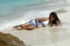 Indian Actress DIMPLE CHOPADE Hot Photos-Set-2 (18)