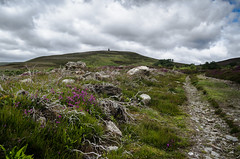 Hill of Rowan (daedmike) Tags: scotland hillofrowan hillwalking heather purple path trail tarfside cloudy hils glenesk