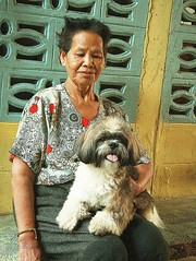 lady with her cute dog (the foreign photographer - ฝรั่งถ่) Tags: old lady sitting cute dog khlong thanon portraits bangkhen bangkok thailand canon kiss