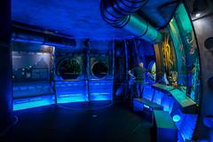 Submarine in Biosphere Potsdam (Sergey Galyonkin) Tags: 2017 berlin biosphere forest garden germany green june park potsdam tropical