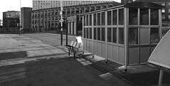 Manors railway station platform - Newcastle upon Tyne, UK (harrytaylor6) Tags: newcastle tyne urban shelter monochrome tonal textures architecture