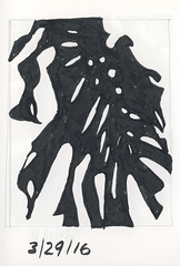 2016.03.29 Three-Quarter View (Julia L. Kay) Tags: shadow shadows silhouette juliakay julialkay julia kay artist artista artiste künstler art kunst peinture dessin arte woman female sanfrancisco san francisco daily everyday 365 botanical botany plant foliage splitleaf philodendron splitleafphilodendron sundances ink paper brush pen brushpen bw black white monochrome