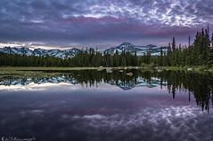 The Magenta Minute (Bill Bowman) Tags: sunset magentaminute redrocklake southernrockymountains navajopeak apachepeak shoshonipeak pawneepeak paiutepeak mounttoll mountaudobon colorado