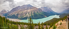 Mountain Fog (Greg Lundgren Photography) Tags: canada canadianrockies alberta peyto lake glacier fog mountains roadtrip vacation banff banffnationalpark icefieldsparkway panorama