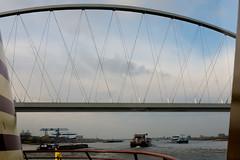 _DSC7658 (durr-architect) Tags: spiegelwaal ruimte room river waal nijmegen netherlands high water flood island bridge nevengeul