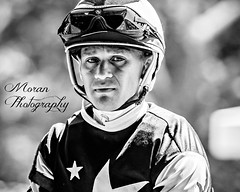 Javier Castellano (EASY GOER) Tags: belmontpark horseracing sports equine thoroughbred horse racetrack horses thoroughbreds ny sportofkings racing athletes newyorkstate canon 5d mark iii races 5dmarkiii
