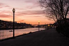 Sunset (Francisco (PortoPortugal)) Tags: 1612016 20170223fpbo5040 pôrdosol sunset riodouro douroriver porto portugal portografiaassociaçãofotográficadoporto franciscooliveira