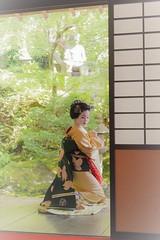 Maiko_20170528_20_12 (kyoto flower) Tags: eishoin temple tomitsuyu kyoto maiko 20170528 舞妓 栄摂院 富津兪 京都 akihitomiyaji