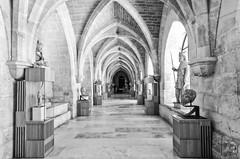 Catedral de Burgos (D. Lorente) Tags: dlorente nikon catedral cathedral architecture arcos bw bn burgos exposición