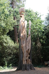 Carved tree (roger_forster) Tags: carvedtree paulsivell stanleypark alverstoke gosport hampshire montereycyprus tree carving sculpture park woodland