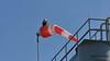JR73D72_6558F (john_robson) Tags: bcferriescomox windsock baldeagle vancouverislandbc bccanada