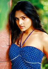 Indian Actress Ramya Hot Sexy Images Set-2  (14)