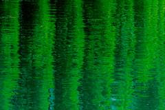amplitudes (ToDoe) Tags: green grün spiegelung amplituden ausschlag schwingung reflection reflexion water mincio