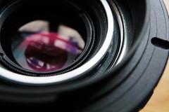DSC00651-1.jpg (theoldsmithy) Tags: lens jupiter soviet macro macromondays bottomsup close sony a6000 extension