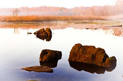 Quiet, and comforting... (tomk630) Tags: virginia potomac river nature beauty calm comforting fog stones reflections