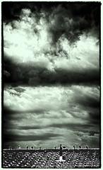 Day 187. (lizzieisdizzy) Tags: blackandwhite blackwhite black beautiful whiteandblack white whiteblack monochrome mono monotone monochromatic roof bird birds pigeons tile sky cloud clouds thunder thundery thundering storm darkclouds dark spooky