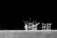 Double drop (Podrobnost) Tags: black white photography kunst art wassertropfen wasser regentropfen tropfen regen too 2 two twice rain drop water