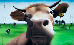 graffitti rouen (rascal76160) Tags: art peinture graf graffiti rouen couleurs mur painting