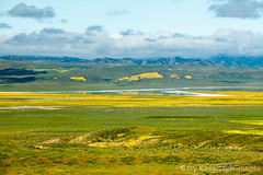 View Across Carrizo Plain Toward Soda Lake & Caliente Range (Gary Rides Bikes) Tags: california carrizoplain carrizoplainnationalmonument northamerica sanluisobispocounty sodalake springtime usa beautyinnature goldcolored greencolor inbloom lake landscape nature nopeople plain remote scenicsnature yellow
