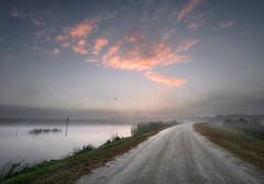 Dirt road at dawn. (Jill Bazeley) Tags: dirt road dawn sunrise viera wetlands ritch grissom memorial brevard county space coast florida melbourne mist fog lake sony a6300 1018mm unpaved