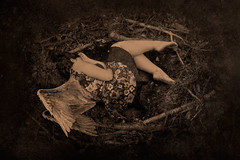 Inside the Nest (Naufragia Arts) Tags: bird nest sepia parchment antiguo art vintage old ancient reborn born wings angel selfportrait selfie autorretrato nido ave pergamino arte viejo mujer woman girl chica