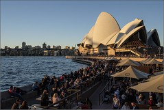 """""""Winter Afternoon Sun"""" Opera House, Sydney, Australia (July 2017) (Kommie) Tags: r f14 23mm fujinon xpro2 fujifilm afternoon winter sunday photography candid street people harbour house opera sydney"""