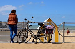 Doudoune au soleil (soyer_rodrigue) Tags: nikon d5100 noordzee westende mer littoral vélo bike belgique flandre vlaanderen kust digue