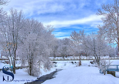 Snow covered trees by the pond from 2015 (Singing With Light) Tags: 2015 22nd ct ctk3 duckpond february milford pier sbc singingwithlight snowice frozen oldtower pentax photography singingwithlightphotography walnutbeach winter
