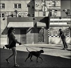 Along the Avenue (D. Ingraham) Tags: monochrome mobilephotography venicebeach iphone iphoneography california losangeles shadow light toned