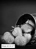 Image de vie le Futur d'Anna, Abysses. Sud-Ouest Pierre Adonis (Pierre Adonis) Tags: sexualité cap dagde naturiste naturisme sex femme libertine wyylde cul hédonisme épicurisme lahaie adonis pierre fraises sud ouest goadec la pucelle